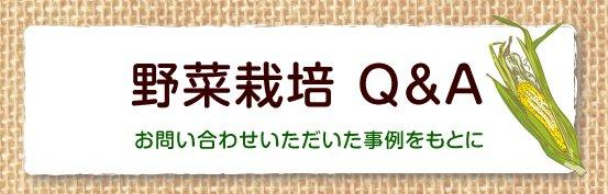 野菜栽培Q&A