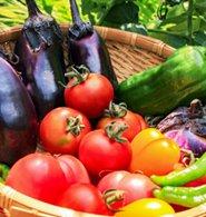 野菜の分類