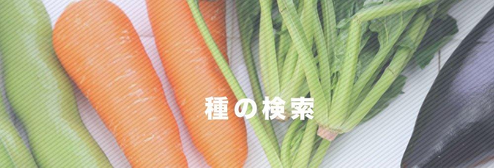 野菜の種検索